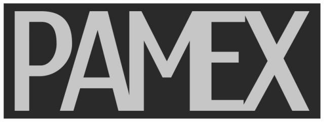 logo pamex wyburzenia
